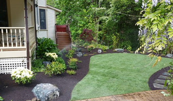 Redo a small side yard.  It was a tired old lawn.