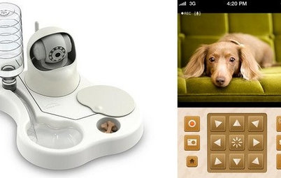 To Feed and Protect: Care for Your Pet From Afar With New Devices