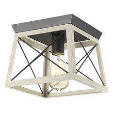 Progress Lighting - Progress Lighting Briarwood 1-Light Flush Mount, Graphite - Outdoor Flush-mount Ceiling Lighting