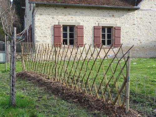 clôture jardin osier vivant