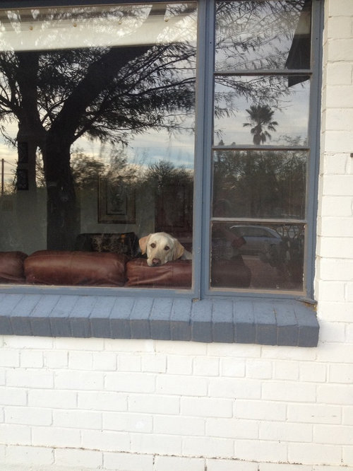 Window Awnings For 1940 S Painted Brick Ranch In Tucson