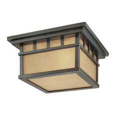 Dolan Designs 9119 Two Light Outdoor Ceiling Fixture - Winchester