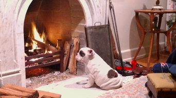 Falmouth fireplace