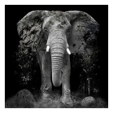 """""""The_Disappearance_of_the_Elephant"""", Ink Photography"""