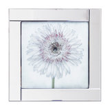 Square Mirror Picture Frame With Gerbera Glittered Daisy Illustration