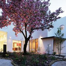 Houzzツアー:八重桜をめでる家
