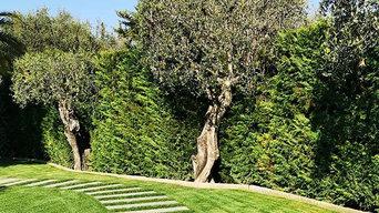 Créations de jardins