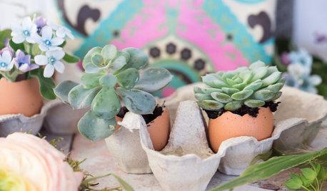 DIY : Une décoration de Pâques fleurie avec des succulentes