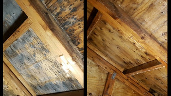 Mold remediation of attic