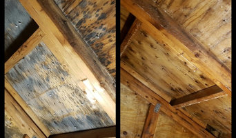 Mold remediation of attic