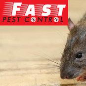 Foto von Pest Control Toowoomba