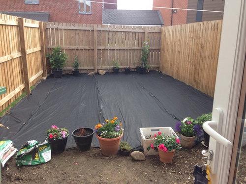 New build home , small garden | Houzz UK