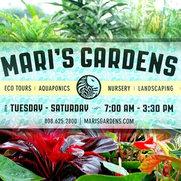 Mari's Gardens's photo
