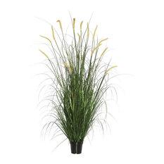 """Foxtail Grass in Pot, Green, 24"""""""
