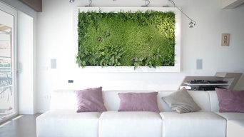 Vegetable Pictures _ Quadri Vegetali