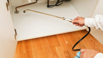 Pest Control Services in Brisbane