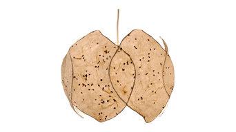 8 Panel Lotus Drum Pendant Natural Paper, Milkweed Texture