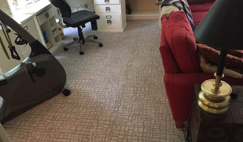 Stainmaster Pet Protect Carpet in FROG room