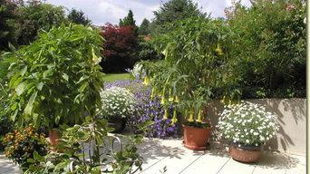Pflanzungen