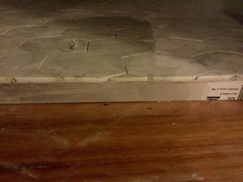 Urgent Advice On Bathroom Tile To Hallway Threshold Transition