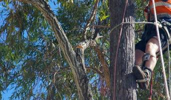 tree lopping Redlands