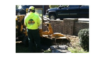 Tree Removal in Cherry Hill, NJ