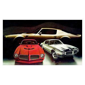 Promotional Advertising Poster 1973 AMC Javelin