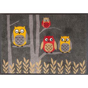 Easy Clean Owls Doormat