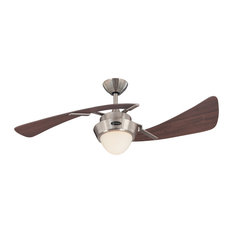 50 most popular contemporary ceiling fans for 2018 houzz westinghouse 2 blade ceiling fan brushed nickel and maple plywood 48 aloadofball Gallery