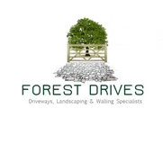 Forest Drives's photo