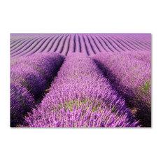 Michael Blanchette 'Purple Hills' Canvas Art, 47x30
