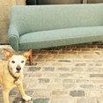 7 Upholstery Ltd's profile photo