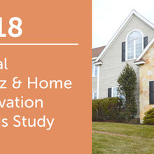 2018 Global Houzz & Home: Renovation Trends