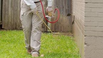 Anver Pest Control