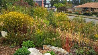 Magnuson Park Native Garden