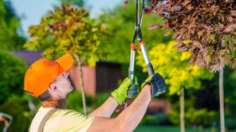 SLC Tree Service Pros