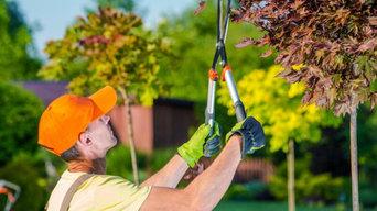 SLC Tree Service Pros