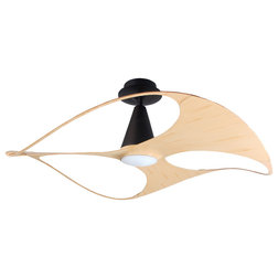 Contemporary Ceiling Fans by PAN AIR ELECTRIC CO., LTD.
