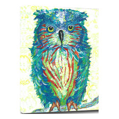 """Colorful Owl B Mounted Canvas Giclee 16""""x20"""""""