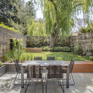 Inspiration for a contemporary patio in Sydney with no cover.