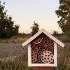 Beekeeping Without a Hive