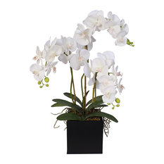 Real Touch Phalaenopsis Silk Orchids With Succulents in Metal Container