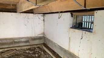 Spider Web Removal In Crawlspace
