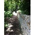 Cotswold Stone & Lime Ltd's profile photo