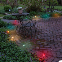 Electric Pathway Lights, Multicolor