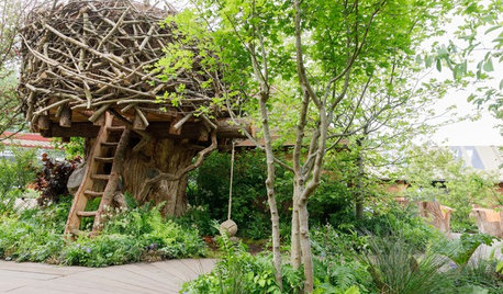 Top Trends From the UK's 2019 RHS Chelsea Flower Show