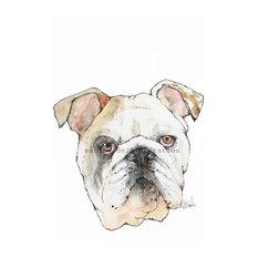 - Hand Drawn Bulldog Print - Drawings And Illustrations