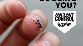 Joel's Pest Control