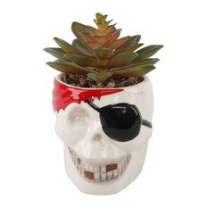 Faux Succulent, Ceramic Pirate, E Pack