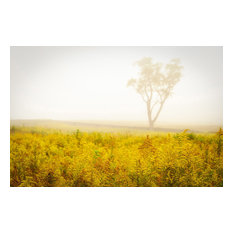 """Dreams of Goldenrod and Fog"" Landscape Photo Unframed Wall Art Print, 24""x36"""
